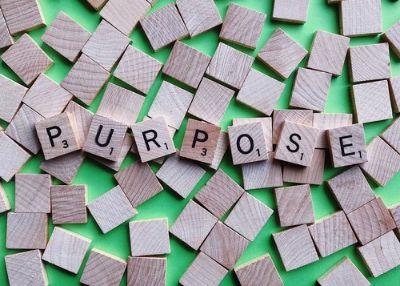 life purpose why 01