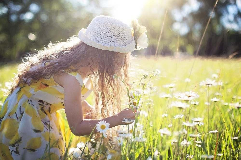 flowers enjoy life