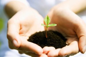 self-growth personal development