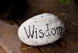 learning plan wisdom